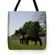 Bluegrass Summer Day Tote Bag by Roger Potts
