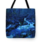 Blues Traveler Tote Bag