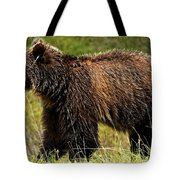 Bluetooth Grizzly 2 Tote Bag