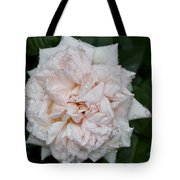 Blush Dew Tote Bag