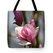 Blushing Magnolia Tote Bag
