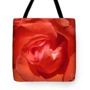 Blushing Orange Rose 5 Tote Bag