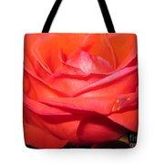 Blushing Orange Rose 7 Tote Bag