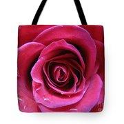 Blushing Pink Rose 3 Tote Bag