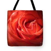 Blushing Orange Rose 1 Tote Bag