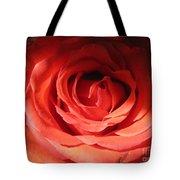 Blushing Orange Rose 3 Tote Bag