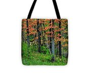 Blustery October Weather Tote Bag