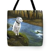 Bo At The Patapsco Tote Bag