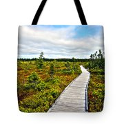 Orono Boardwalk Tote Bag