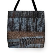 Boardwalk Series No2 Tote Bag