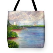 Boardwalk To Beach At John D Macarthur State Park Tote Bag