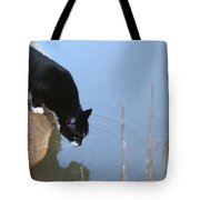 Boat Drinking From Pond Tote Bag