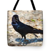 Boat-tailed Grackle Tote Bag