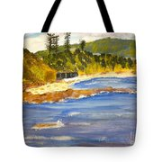 Boatsheds At Sandon Point Tote Bag