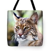 Bob Cat Pose Tote Bag