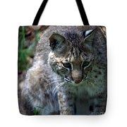 Bobcat 20 Tote Bag