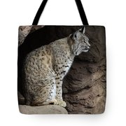 Bobcat Tote Bag by Bob Christopher