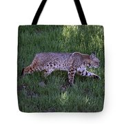 Bobcat On The Move Tote Bag