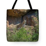 Bobcat Point Tote Bag