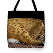 Bobcat Tote Bag by Rose Santuci-Sofranko