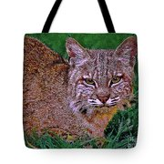 Bobcat Sedona Wilderness Tote Bag
