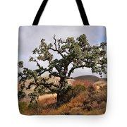 Bobcats Tree Tote Bag
