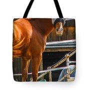 Bode In Disguise Tote Bag