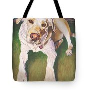 Bodie Living Large Tote Bag
