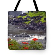 Boiling Pots State Park Tote Bag