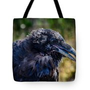 Bold And Demanding Raven Tote Bag