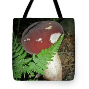Bolete Mushroom And Fern Tote Bag