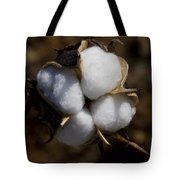 Bolls Of Cotton Tote Bag