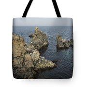 Bonavista Rocks Tote Bag