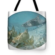 Bonefish Pursued By A Shark, 1972 Tote Bag