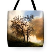 Bonfire And Olive Tree Tote Bag