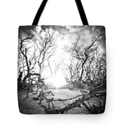 Bonita Beach Walkway Tote Bag