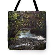 Bonne Femme Creek Tote Bag