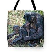 Bonobo Adult Tickeling Juvenile Tote Bag