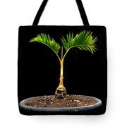 Bonsai Palm Tree Tote Bag