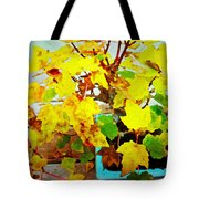 Bonsai Tree With Yellow Leaves Tote Bag