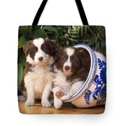 Border Collie Puppies In Plant Pot Tote Bag