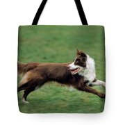 Border Collie Running Tote Bag