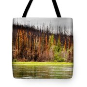 Boreal Forest At Yukon River Destroyed By Fire Tote Bag