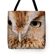 Boreal Owl Eyes  Tote Bag