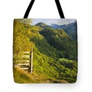 Borrowdale Valley - Lake District Tote Bag