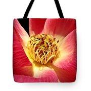 Borrowed Rose Tote Bag