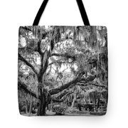 Bosque Bello Oak Tote Bag