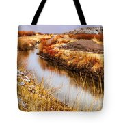 Bosque Canal Tote Bag