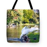 Boston Common Swan Lake Tote Bag