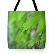 Boston Ivy Bokeh Tote Bag